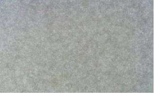 清水模裝飾牆板 600×1200 × 11㎜ (每坪4.5片)