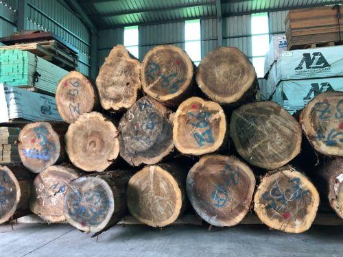 日本杉木原木桌板(百年柳杉)