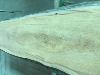 南洋欅木BADU原木自然邊 (較寬面板)